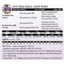 ICC Eisa Erica 3095-8587