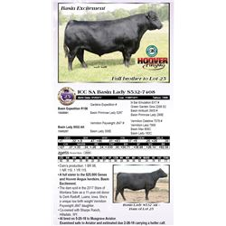 ICC SA Basin Lady S532-7408