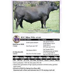 ICC Miss Wix 4146