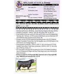 SPA 726E of 517C x Trump