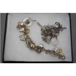 Sterling silver neck chain with nine silver charms and a silver charm bracelet with 19 charms