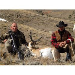 Wyoming - SCOLARI OUTFITTERS Antelope Hunt