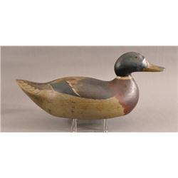 Mason Premier Grade Mallard Duck Decoy