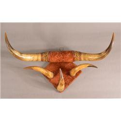 Victorian Mounted Steer Horn Hat Rack
