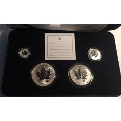 Canada 2004 Silver Maple Leaf Privy 5 Coin Fractional Set