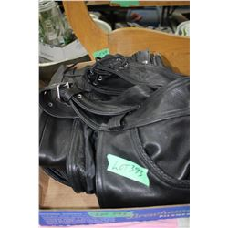 Pair of Motorcycle Chaps