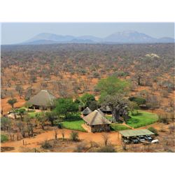 Limpopo Springbuck hunt.