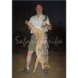 10 Day South African Night Hunt for Two Hunters