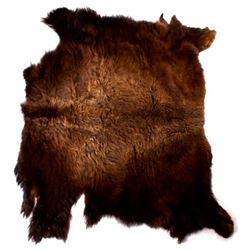 Wild Montana Trophy Buffalo Fur Hide Rug