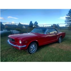 1966 FORD MUSTANG COUPE CALIFORNIA GEM