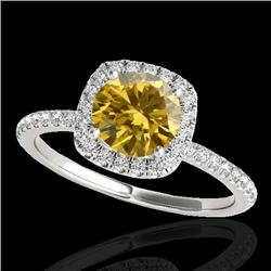1.25 CTW Certified Si/I Fancy Intense Yellow Diamond Solitaire Halo Ring 10K White Gold - REF-218K2W