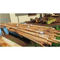 Large Lot of PVC Pipes (Small Dia.)