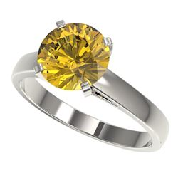 2.50 CTW Certified Intense Yellow SI Diamond Solitaire Ring 10K White Gold - REF-579Y2K - 33047