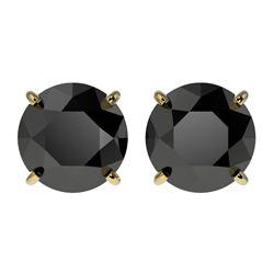 2.60 CTW Fancy Black VS Diamond Solitaire Stud Earrings 10K Yellow Gold - REF-52M8H - 36685