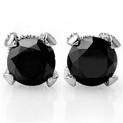 4.0 CTW VS Certified Black & White Diamond Solitaire Stud Earrings 18K White Gold - REF-115X8T - 118