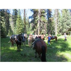 5 Day Purcell Wilderness Adventure for Four