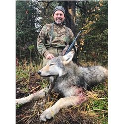 7 Day Remote Wolf Hunt in the Peace Region