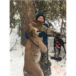 6 Day Cougar Hunt in the Okanagan