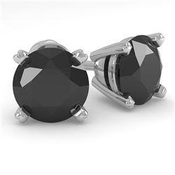 2.0 CTW Black Diamond Stud Designer Earrings 14K White Gold - REF-58W4F - 38374