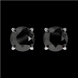 1.05 CTW Fancy Black VS Diamond Solitaire Stud Earrings 10K White Gold - REF-25Y9K - 36584