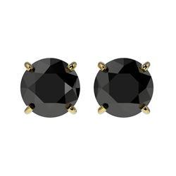 1.61 CTW Fancy Black VS Diamond Solitaire Stud Earrings 10K Yellow Gold - REF-36W2F - 36614