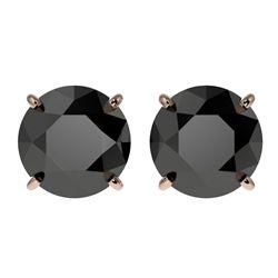 3 CTW Fancy Black VS Diamond Solitaire Stud Earrings 10K Rose Gold - REF-64N3Y - 33124