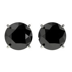2 CTW Fancy Black VS Diamond Solitaire Stud Earrings 10K White Gold - REF-40H9A - 33083