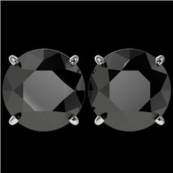5.15 CTW Fancy Black VS Diamond Solitaire Stud Earrings 10K White Gold - REF-99N5Y - 36714