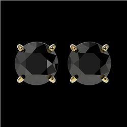 1.61 CTW Fancy Black VS Diamond Solitaire Stud Earrings 10K Yellow Gold - REF-36F2N - 36614