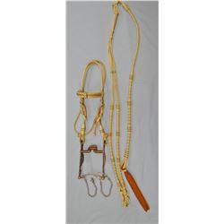 Franko silver mtd bit in fancy Peruvian braided leather headstall