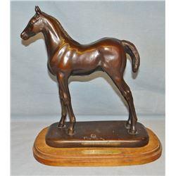 "Ace Powell bronze, Sun Mountain Colt, 41/100, 11"" h x 10"" w"