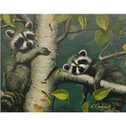 Pickthorn, A. Nadine, Raccoons, Canvas Print , 9.5 x 7.5