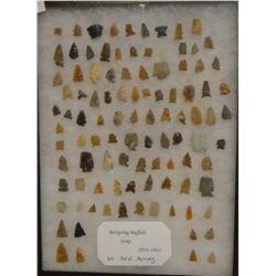 "100 arrowheads found 1958-1963, Bed Springs Buffalo Jump, Sun River, MT, in 12"" x 16"" x 1"" frame."