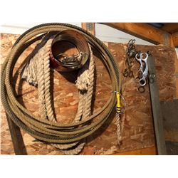Horse Bits/Rope/Sash/Leather Lead/Lamp/Halter