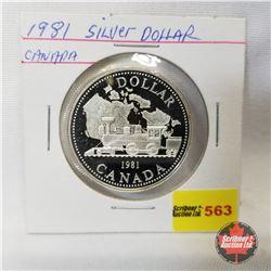 Canada Proof Dollar 1981
