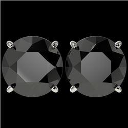 5 CTW Fancy Black VS Diamond Solitaire Stud Earrings 10K White Gold - REF-97Y2K - 33145