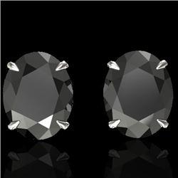 10 CTW Black VS/SI Diamond Designer Solitaire Stud Earrings 18K White Gold - REF-218W5F - 21655
