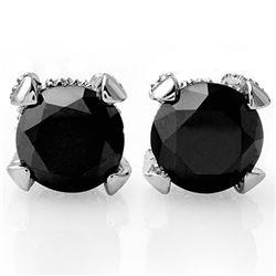 4.0 CTW VS Certified Black & White Diamond Solitaire Stud Earrings 14K White Gold - REF-96M9H - 1185