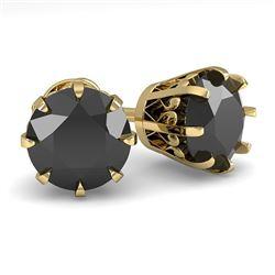 3.0 CTW Black Diamond Stud Solitaire Earrings 18K Yellow Gold - REF-105Y5K - 35704