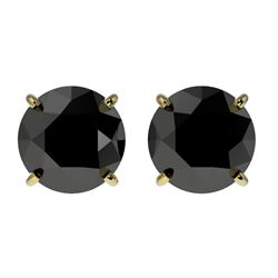 2 CTW Fancy Black VS Diamond Solitaire Stud Earrings 10K Yellow Gold - REF-40A9X - 33085