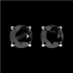 1 CTW Fancy Black VS Diamond Solitaire Stud Earrings 10K White Gold - REF-25Y2K - 33052