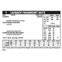 LAUBACH PARAMOUNT 8073