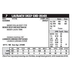 LAUBACH DEEP END 8048