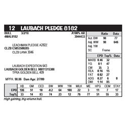 LAUBACH PLEDGE 8182