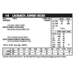 LAUBACH JUMBO 8038