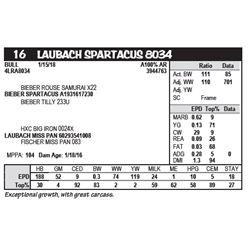 LAUBACH SPARTACUS 8034