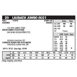 LAUBACH JUMBO 8021