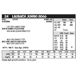 LAUBACH JUMBO 8066