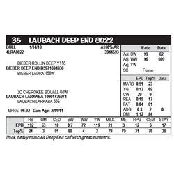 LAUBACH DEEP END 8022
