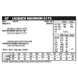 LAUBACH MAXIMUM 8175